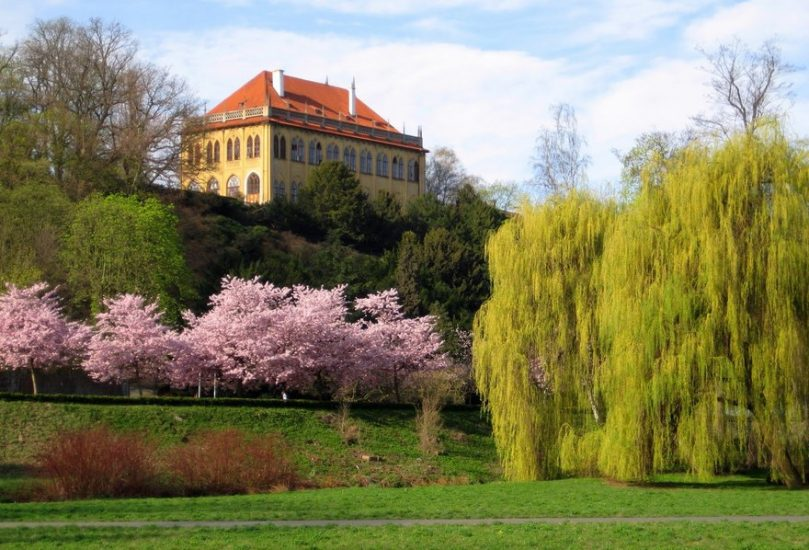 Романтические экскурсии в Прагу