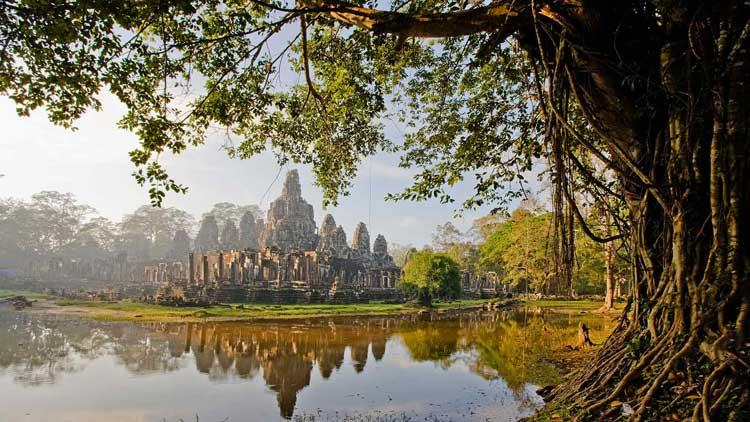 Камбоджа - цветущие джунгли по дешевой цене