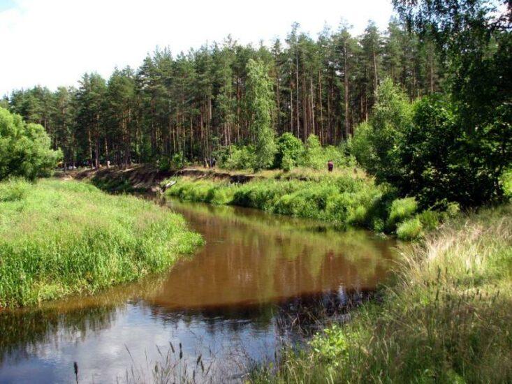 Сплав на байдарках по реке Рессета